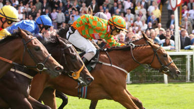 Musselburgh: Racecourse deemed fit after inspection.
