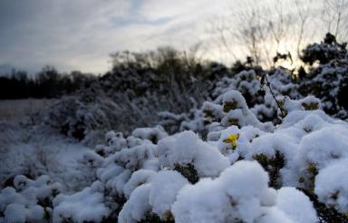 Moray Weather: Conflicting messages from experts