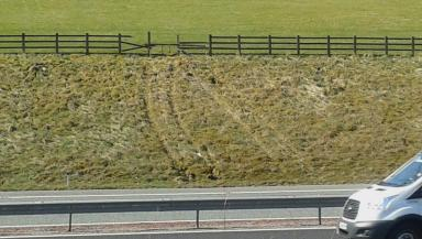 Side of M74 where tractor driven by a dog came off field and onto motorway uplaoded April 22 2015 quality news iamge