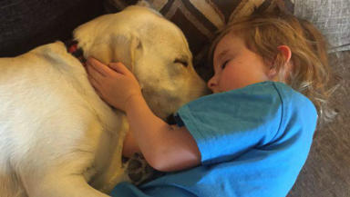 Hero dog Baxter with six-year-old Olivia who he saved from choking on vomit during seizure at Renfew home, uploaded with permission from mother Amanda Goodman November 23 2015