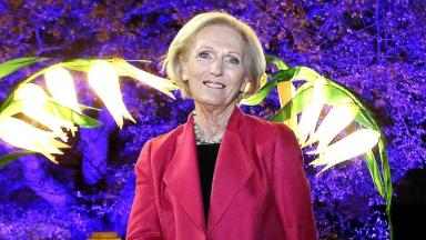 Great British Bake Off judge Mary Berry will be presiding over the celebs' culinary efforts