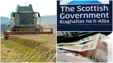 Farming: The system was set up to reform CAP payments.