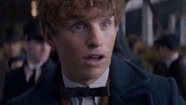 Fantastic Beasts: The first film in 2016 starred Eddie Redmayne.