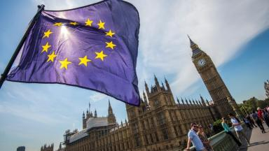 Pro-EU feeling: Campaigners have been pushing for a second vote.