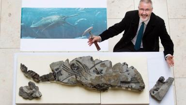Allan Gillies' father stumbled upon the fossil while out a Sunday afternoon walk in Skye.