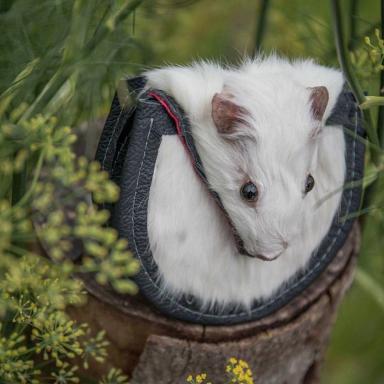 Emma recently made a guinea pig sporran for a child