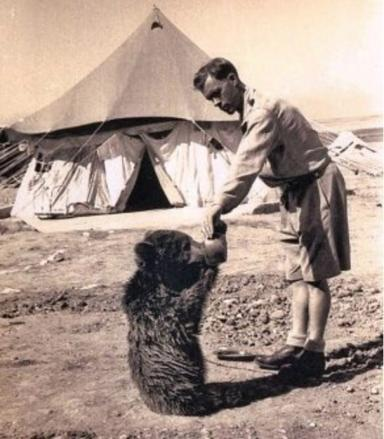 Wojtek: Movie will follow his life from cub to retirement.