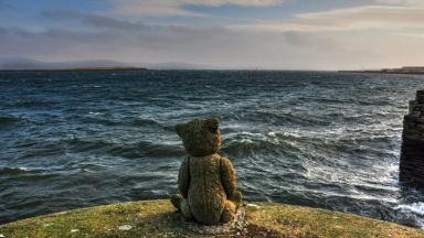 Bear necessities: The Stromness bear with a tale to tell.