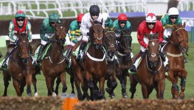 Competition: Cheltenham has some of the world's best Grade I racing.