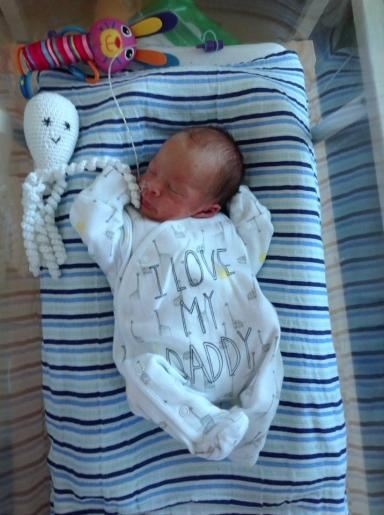 Laurence, now five weeks, with his octopus. He was born at 33 weeks.