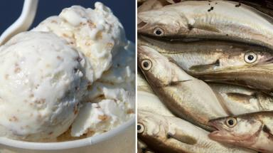 Foul mix: Ice cream and fish allegedly mashed together in same bowl.