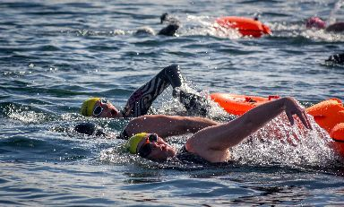 Some swimmers forgeo wetsuits and chose costumes instead.