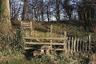 Pepper Wood is a great walking spot.