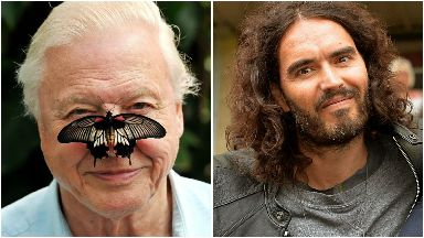Stars: David Attenborough and Russell Brand.