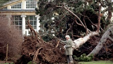 Burns Day: More than three million trees uprooted in 1990 storm.