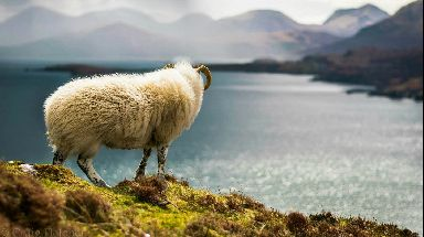 Bonnie view: A collection of shots to make you fall in love with Scotland all over again.