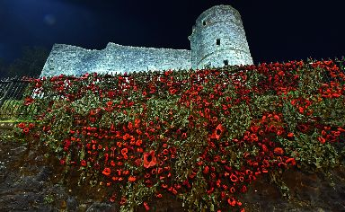 Remembrance: Thousands of poppies were handcrafted by the anonymous group.