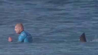 Champion surfer Mick Fanning was attacked by a shark mid-competition in 2015.