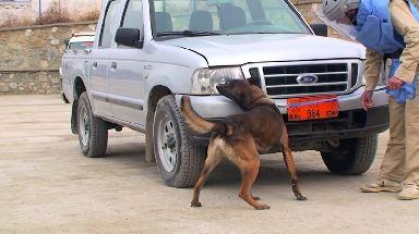 Mali helped detect explosives and enemy fighters.
