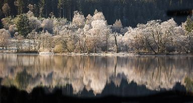 Loch Achray in the Trossachs