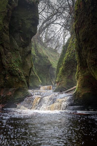 A waterfall glen.