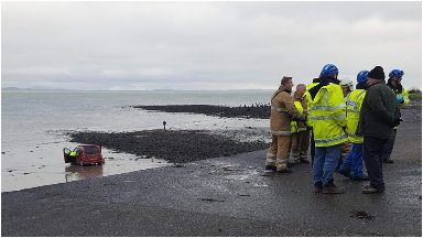 Rescue: The pensioner's car ended up on the beach.