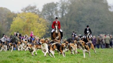 Foxing hunting was banned under Labour in 2004.