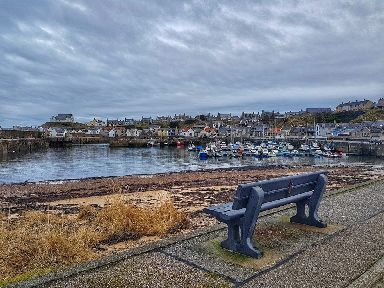 A peaceful spot by the harbour.