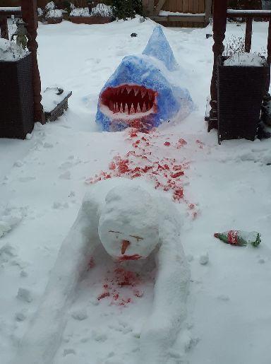 Snowman Shark