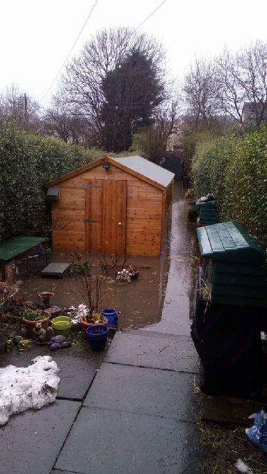 The newly built hedgehog shed is under water.