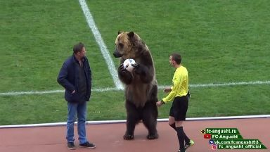Footage showed a bear performing before a football match.