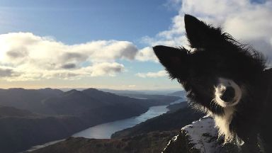Floss the photobombing dog on snowy Ben Narnain.