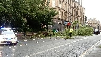 Storm Hector: Tree felled on Great Western Road in Glasgow.