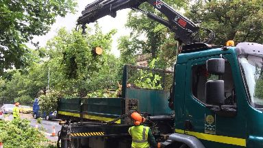 Clean-up: Fallen trees collected on Great Western Road.