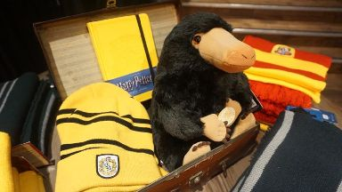 Niffler: From Fantastic Beasts and Where To Find Them.
