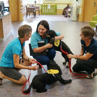 Pharmacy technician Carrie Hogg was delighted to meet the therapets for the first time.