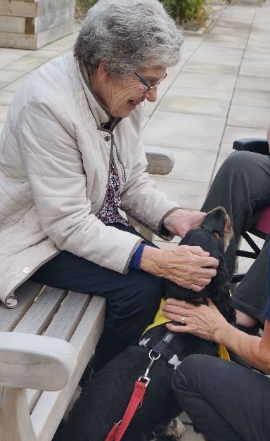 Iris Bell and her husband John enjoyed the calming cuddles from the dogs in the garden.