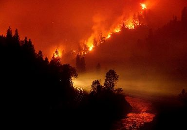 The Delta Fire burns in the Shasta-Trinity National Forest