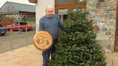 Tree: John has chosen a 20ft fir for the Prime Minister.