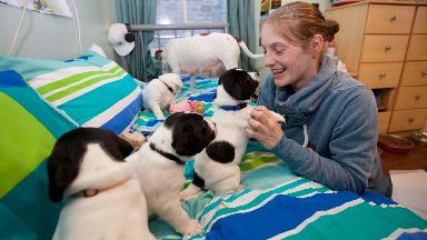 Puppies: Natasha Robins with the dogs.