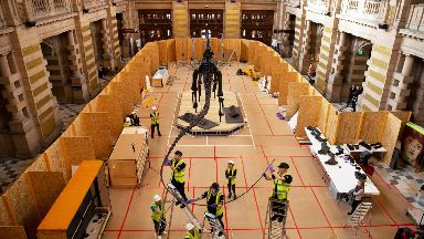 Dippy is on show at Kelvingrove Art Gallery and Museum.