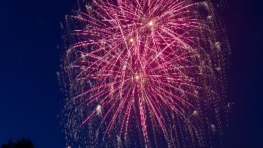 Fireworks: The public could be banned from buying them.