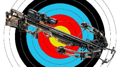 Weapon: Police believed the teenagers had a real crossbow.
