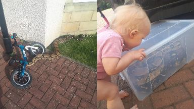 Escaped snake: Bruce Baker found a Boa Constrictor next to his daughter Willow.