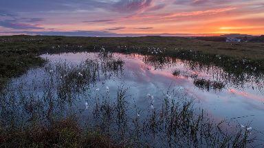 Flow Country: 'World's best peatland'.