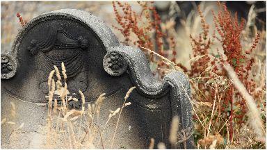 Gravestone: The thief struck at Brechin Cemetery.