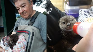 Rescued: James Buchanan saved the otter cub.