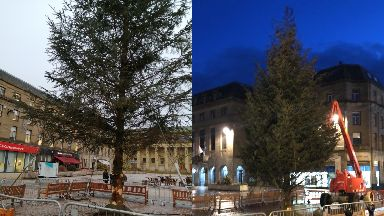 The first tree (left) has been replaced by a fuller one (right).