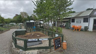 Gorgie City Farm: Campaigners are hoping to save the site.