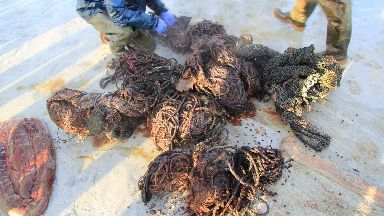 Litter: Bundles of rope were taken from the stomach
